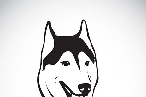 Vector of siberian husky dog head.
