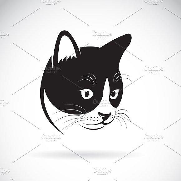 Vector Of A Cat Head Design Pet