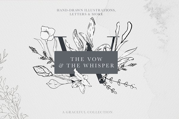 Soft Floral Letters & Illustrations