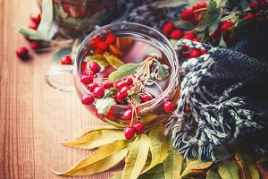 Cup of autumn tea with red berries