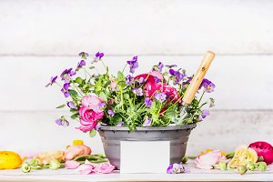 Flowers pot with shovel and mock up