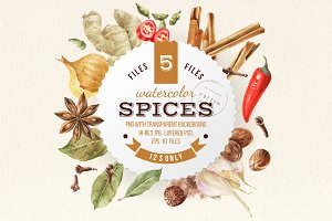Watercolor spices