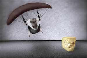 mouse in a parachute