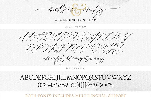 Melvin and emily font duo script fonts creative market stopboris Images