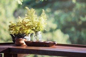 yellow flowers in wood potted
