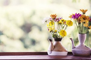 photo of flowers in ceramic potted
