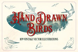 Vintage Hand Drawn Birds