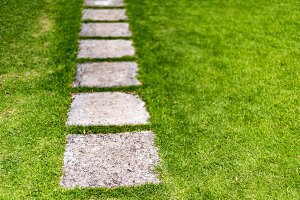 Stepping stones set in green grass