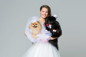 bride girl with Spitz dog wedding couple