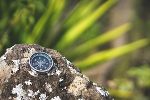 Navigation concept - Analogical compass laying on the rocky stone. Blurred agave plant leaves in background