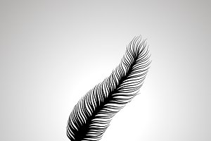 Long feather silhouette, simple icon