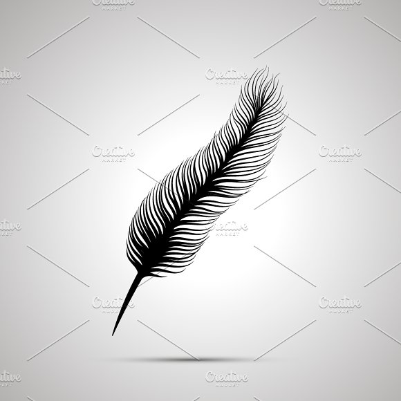 Long Feather Silhouette Simple Icon