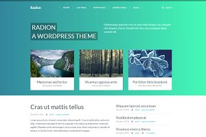 Radion Wordpress theme