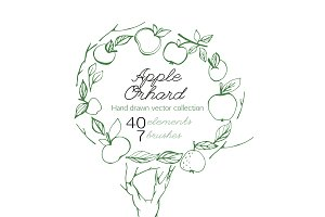 Apple Orchard vector collection