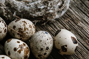 Quail eggs in a nest on a wooden