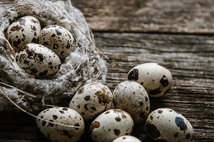 Quail eggs in a nest on a wooden bac