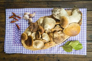 Assortment of mushrooms and ingredients
