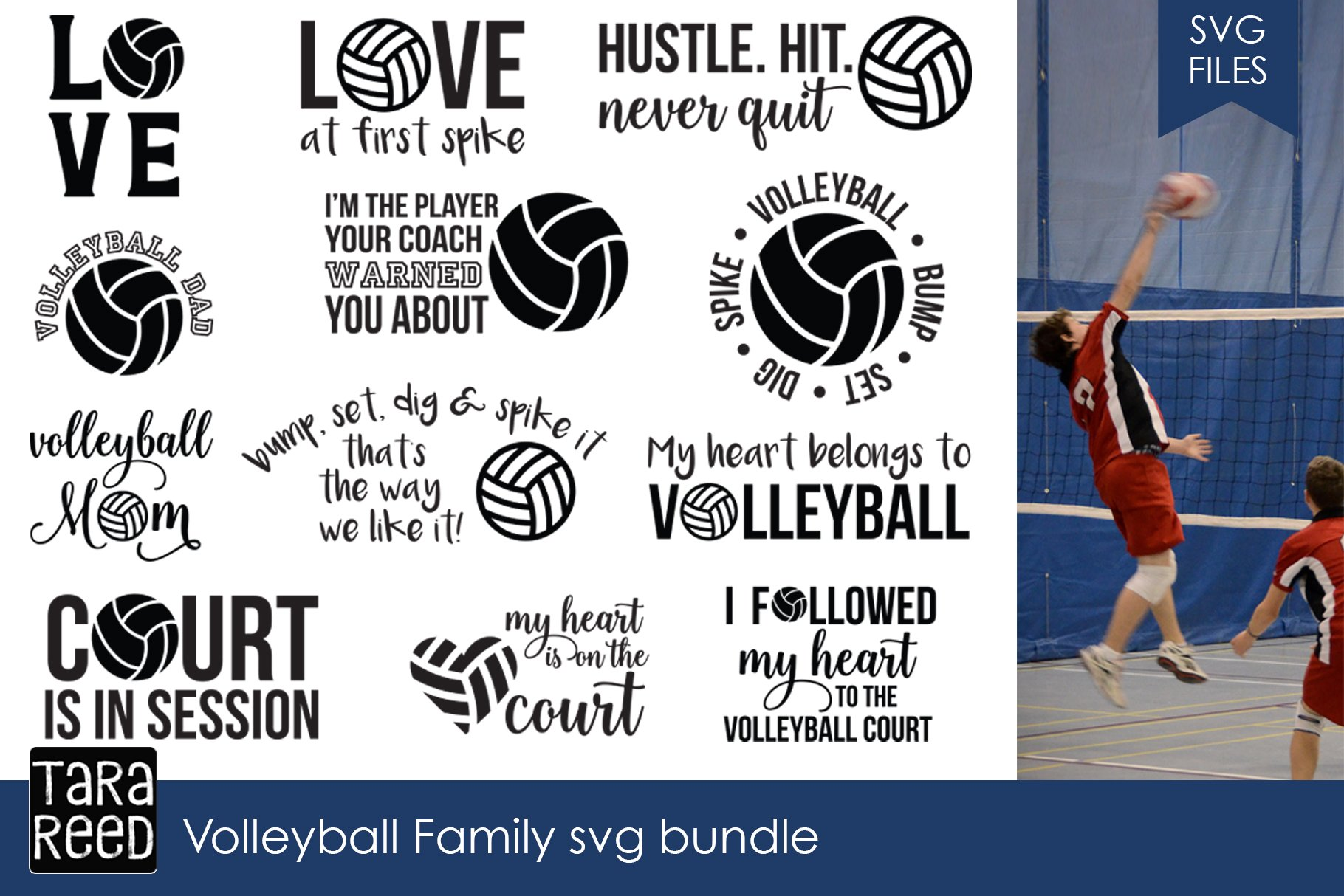 Volleyball Family Svg Bundle Illustrations Creative Market