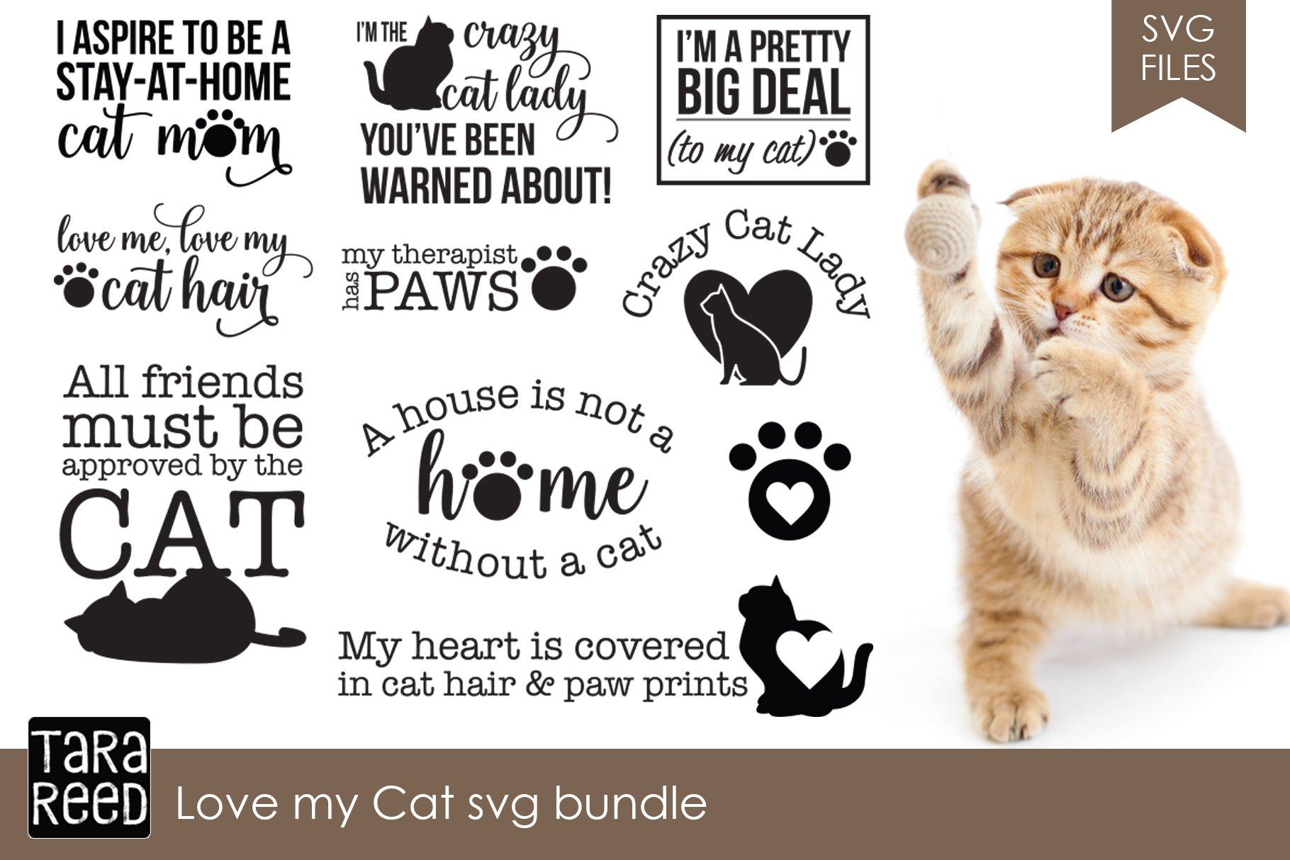 Love My Cat Svg Bundle Illustrations Creative Market