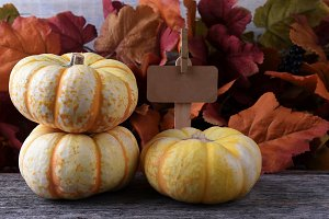 Farm Stand with three white pumpkins