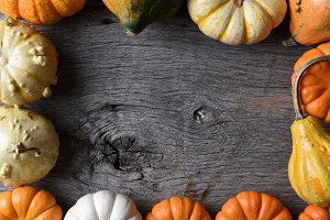 Frame of Decorative Gourds Pumpkin