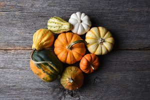 group of decorative Pumpkins, Squash