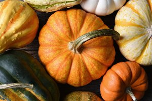 Decorative Pumpkins, Squash, Gourds