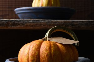 Farm Stand with Autumn a gourd