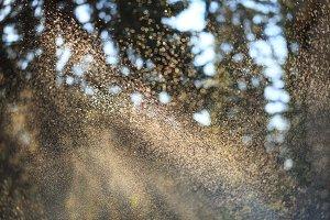 Sprinkle in park. Water drops