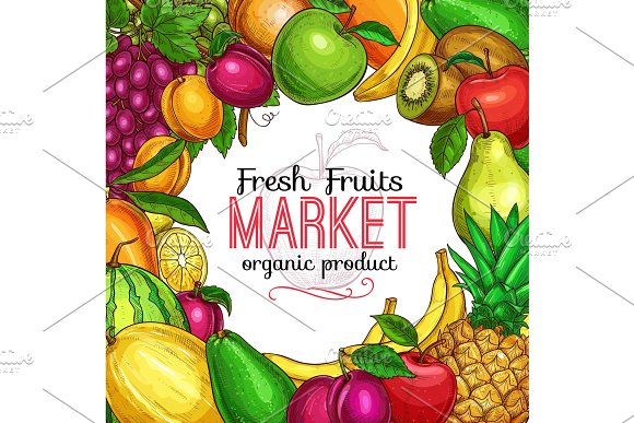 Fresh Fruit And Berry Sketch Frame For Food Design