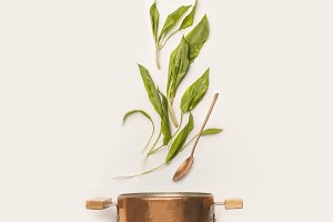 Wild garlic leaves and cooking pot