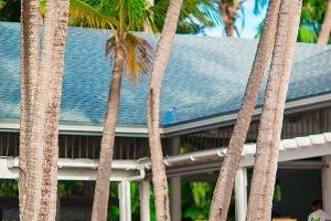 Summer empty open air table set for banquet on tropical caribbean beach