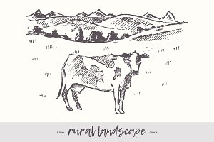 Rural landscape and cow