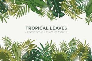 Foliage of exotic jungle plants