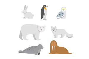 Vector illustrations of arctic snow animals