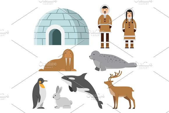 Polar Arctic Animals And Residents Of The North Near Eskimo Ice House