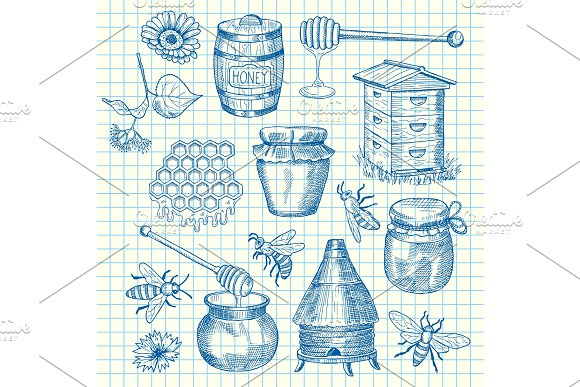 Vector Set Of Hand Drawn Honey Elements On Cell Sheet Illustration