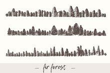 Fir forest backgrounds