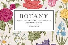 Botany. Victorian garden. Color