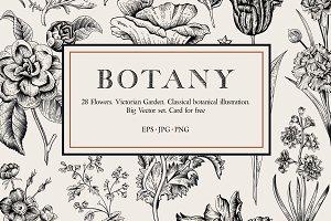 Botany. Victorian garden. B&W