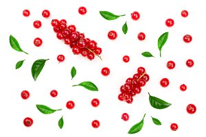 Red currant berries decorated with green leaves isolated on white background