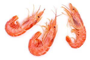 Red cooked prawn or shrimp isolated on white background. Top view
