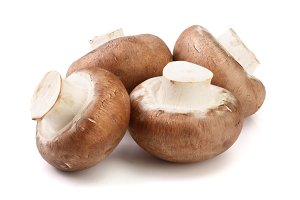 Royal Brown champignon isolated on white background