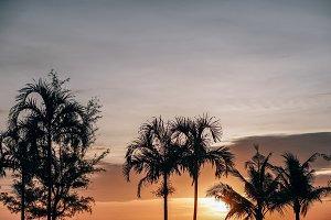 Deep Orange Sunset in Cambodia