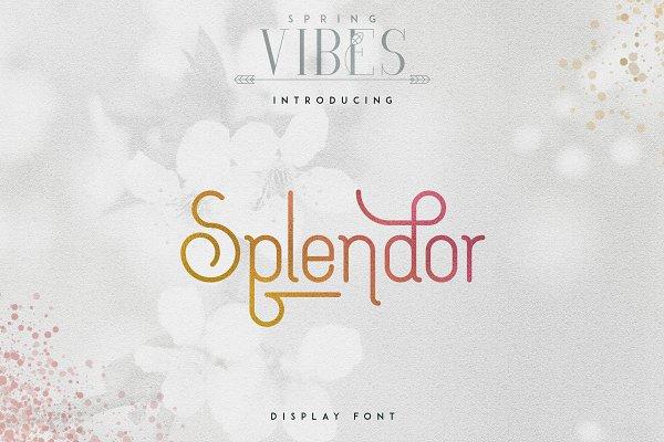[Spring Vibes] Splendor Font -30%