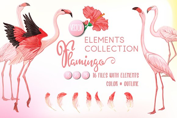 Flamingo Flowers And Feathers Set
