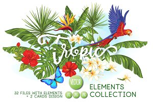 Tropical Birds & Flowers