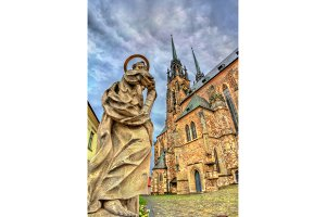 Statue at the Cathedral of Saints Peter and Paul in Brno, Czech Republic
