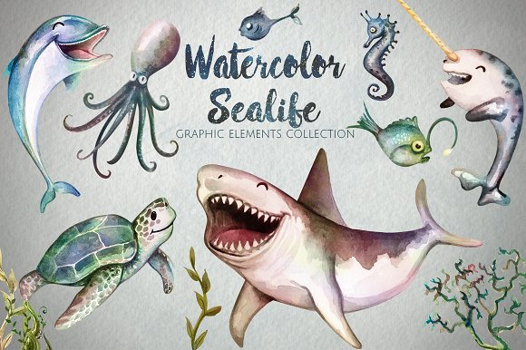 Watercolor Sea Life Graphics