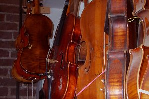 Violins Hanging in Repair Shop